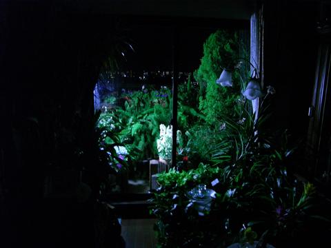 2008・夜のベランダ青1