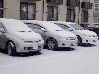 東北雪模様01