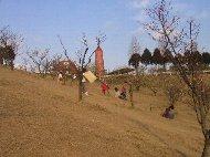 石ヶ谷公園02