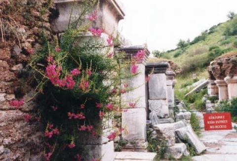エフェス遺跡(トルコ)