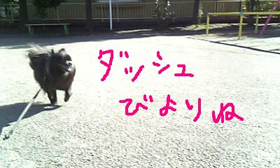 Image228.jpg