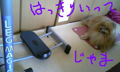 Image087.jpg