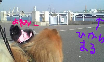 Image111.jpg