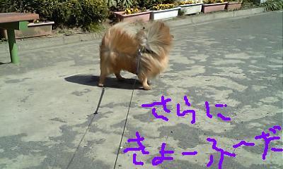 Image010~00.jpg
