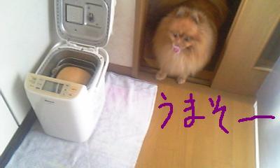 Image044.jpg