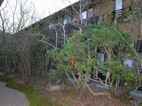 宿泊施設「池の山荘」外観