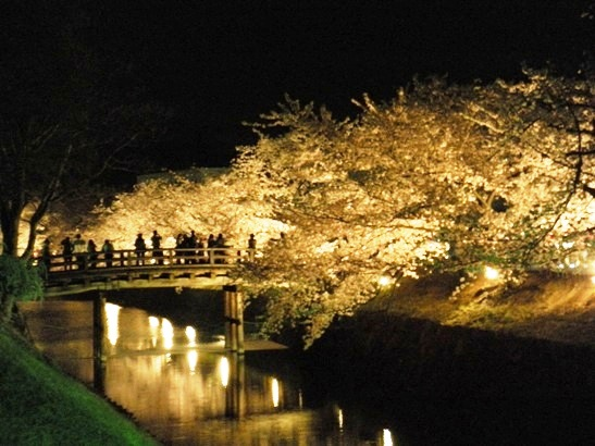 松本城夜桜会の橋
