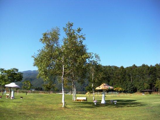 こだまの森公園2
