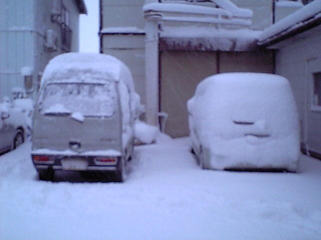3/12の雪