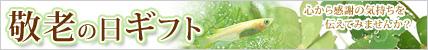 敬老の日ギフト.jpg