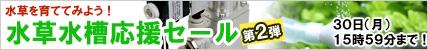 水草応援セール.jpg