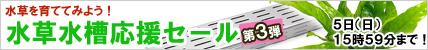 水草水槽応援セール3.jpg