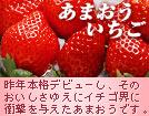 214_amaou.jpg