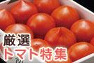 263_tomato.jpg