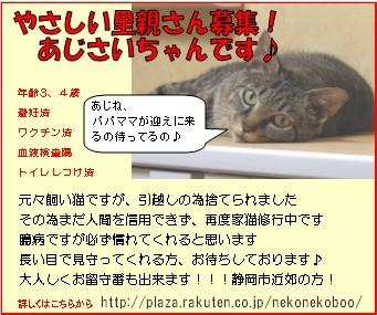 あじさいバナー2.jpg