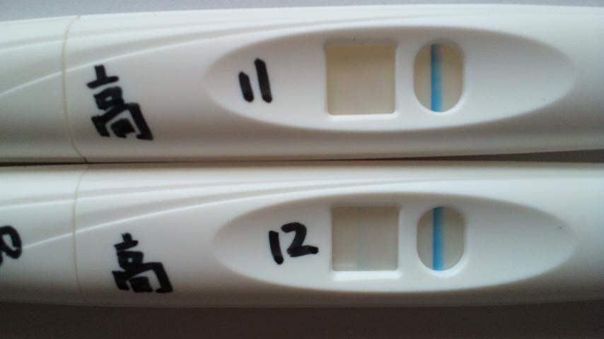 陰性 妊娠 フライング 高温期12日目