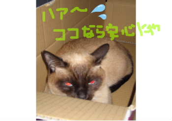 新しいスケッチブック_53.jpg