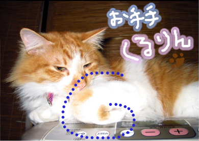 新しいスケッチブック_114.jpg