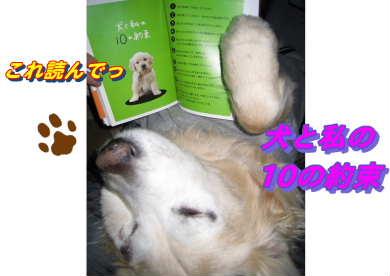 新しいスケッチブック_97.jpg