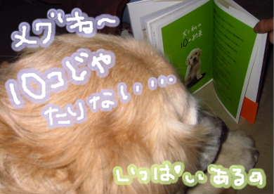 新しいスケッチブック_98.jpg