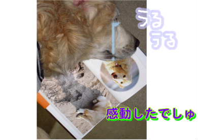 新しいスケッチブック_99.jpg