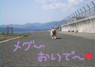 新しいスケッチブック_159.jpg