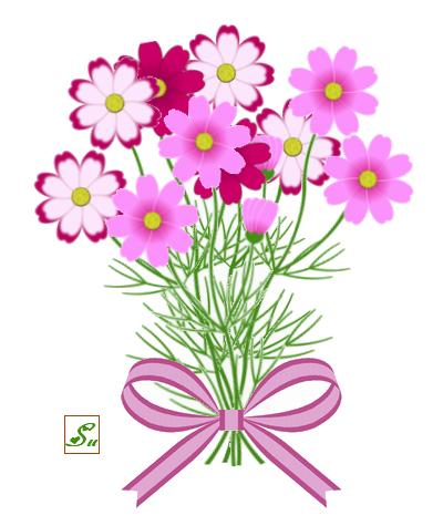 すべての講義 12月 塗り絵 : 秋桜の花束 ・ JTrimで描画 | 末 ...