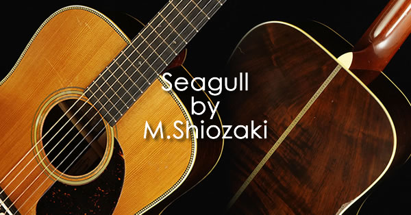 seagull_by_ms_sd60_1937aged.jpg