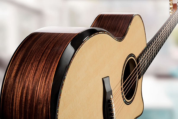 Taylor-WS-3081-914ce-feature-2018.jpg