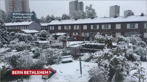 swiss-may-snow.jpg