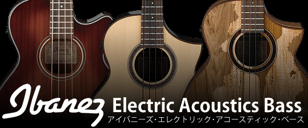 Ibanez Electric Acoustics Bass.jpg