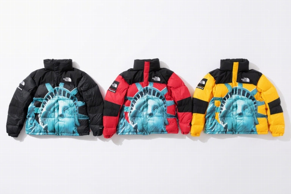 supreme-the-north-face-statue-of-liberty-baltoro-jacket-with-packable-hood-768x512.jpg