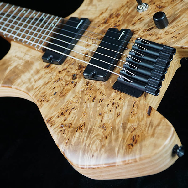 Strandberg Sweden Custom Shop-3.jpg