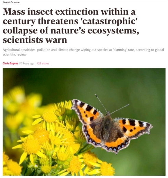 mass-insect-extinction2019.jpg