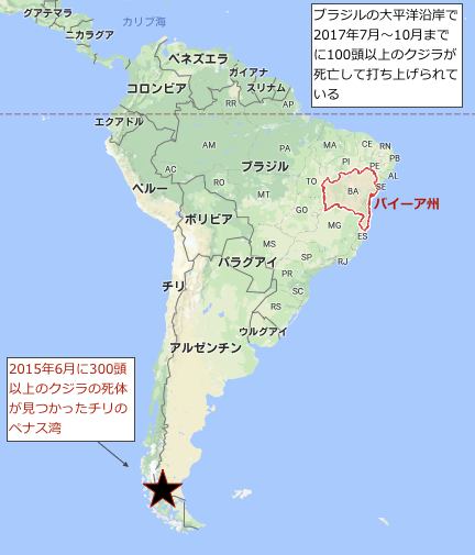 brazil-whale-map2017.png