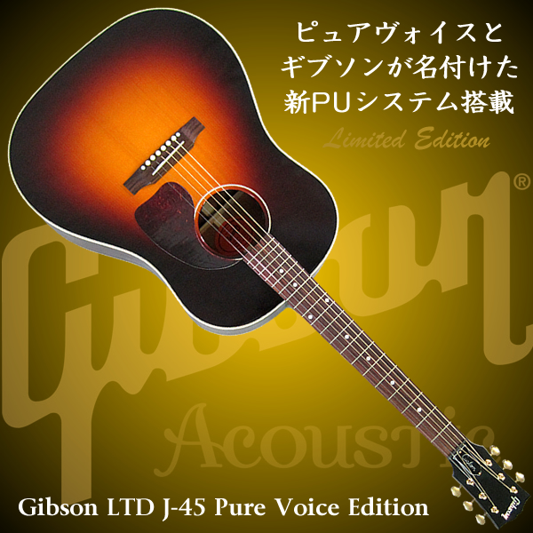 gibson_ltd_j45_pure_voice-600x600