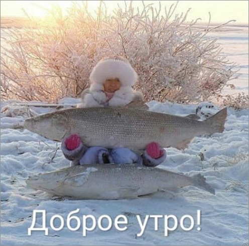 yakutia-fishes-2018.jpg