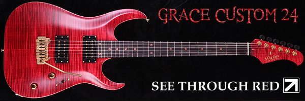 GRACE CUSTOM 24 STR