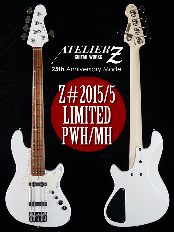 25th Anniversary Model-PWH-600x800.jpg