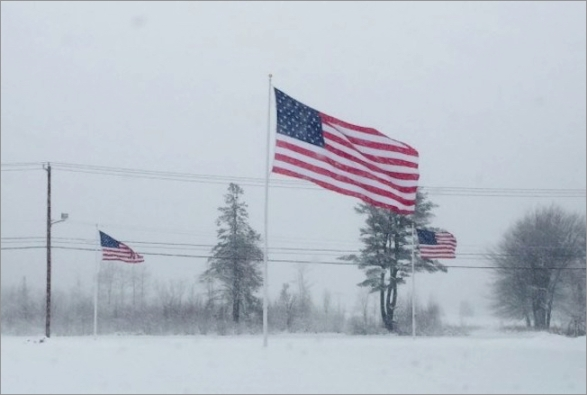 freezing-us-flag2019.jpg