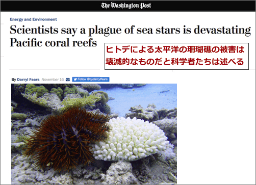 see-star-washingtonpost.jpg