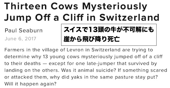 swiss-cow-deaths.jpg