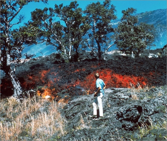 1970-tree-burns.jpg