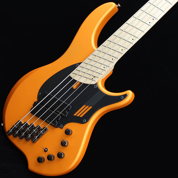 Dingwall NG-2 5strings-OR-1.jpg