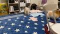「洗えるラグ 200x250 長方形 ラグマット ラグカーペット フランネルマット オールシーズン ウォッシャブル 滑り止め付 マイクロファイバー リビング 絨毯 ホットカーペット対応(代引不可)【送料無料】」の商品レビュー詳細を見る