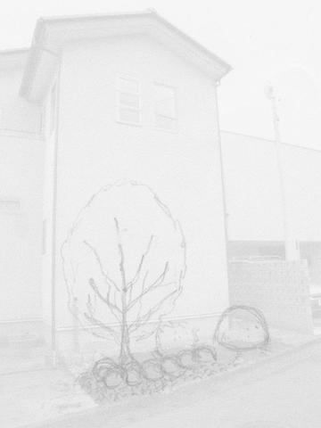 側庭デッサン_R.jpg