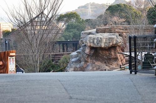 到津の森です 522.jpg