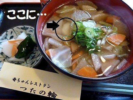 ☆だまこ汁2up(V.2013_08_22__08_46_57).jpg