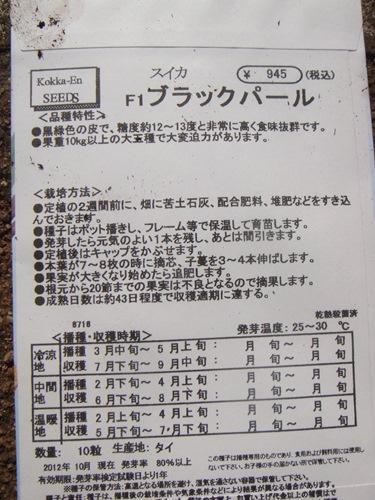 DSC04626_R.JPG