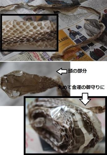 2014_0927_161004-IMG_8621.JPG